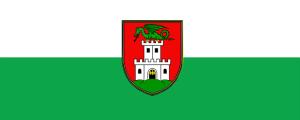 علم بلدية ليوبليانا