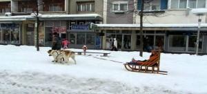 التزلج على الثلج في سلوفينيا